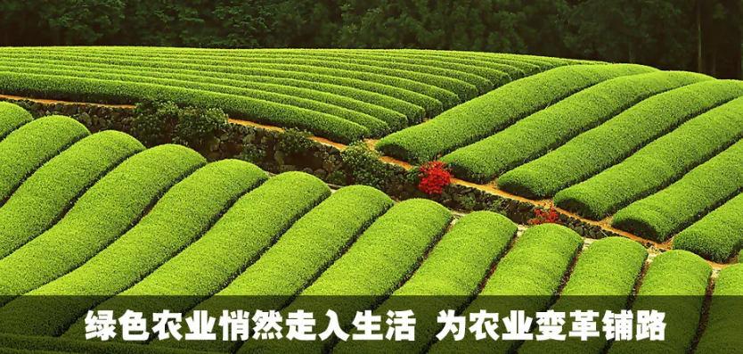 中央定了!2021年农业改革正式开启!